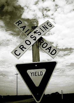 Rail Crossing by Janice Woodring