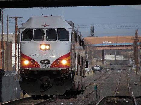 Feva  Fotos - Rail Runner