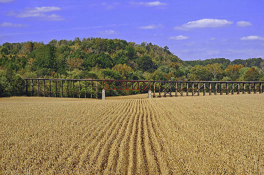 Railroad Bridge Landscape by Hans Castleberg
