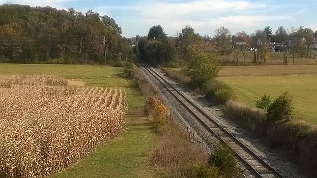 Railroad Cut Gettysburg Battlefield by Joann Renner