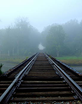 Rails to nowhere by Mike Bass