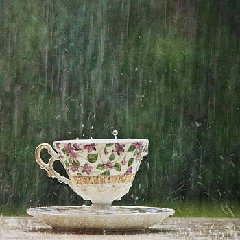 Rain on a Teacup - II by Mary Hershberger