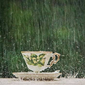 Rain on a Teacup - I by Mary Hershberger