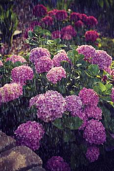 Rain on me by Sheila Carroll