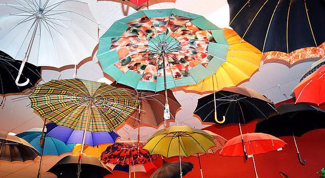 Cindy Nunn - Rain Rain Go Away