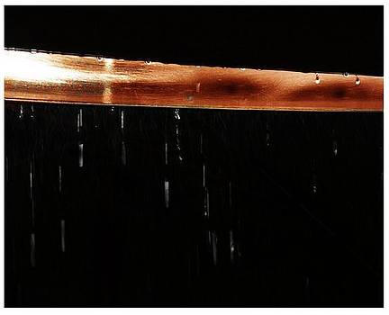 Rain by Yeram Reyes