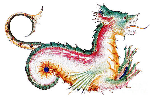 Photo Researchers - Rainbow Colored Dragon 15th Century