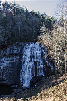 Lynn Palmer - Rainbow Falls Vista