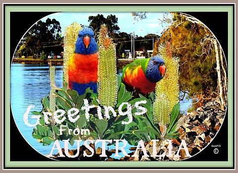 Rainbow Greeting card by Kevin Perandis
