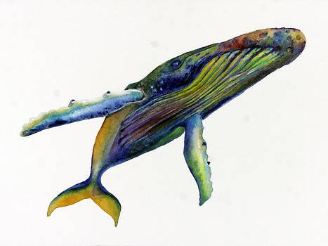 Rainbow Humpback  by Michelle Scott