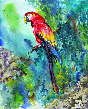 Rainbow on the Fly by Pamela Shearer