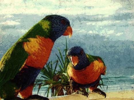 Rainbow Parrots by Digital Art Photo Studio