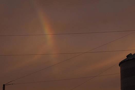 Rainbow Wires by Daniel Kasztelan