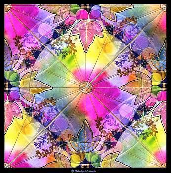 Rainbows by Melodye Whitaker