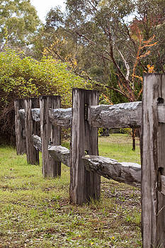 Michelle Wrighton - Raindrops on Rustic Wood Fence