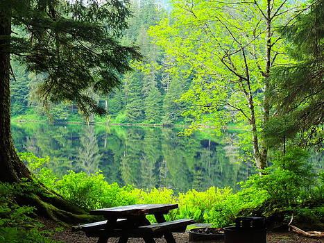 Rainforest Beauty by Karen Horn