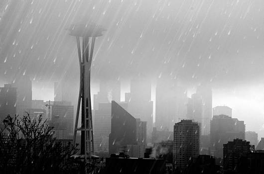 Rainie Seattle Cityscape by Glenn McGloughlin