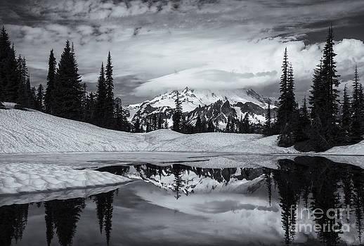 Mike  Dawson - Rainier Reflections