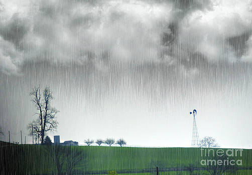 Rainy Day Farm Ver-1 by Larry Mulvehill