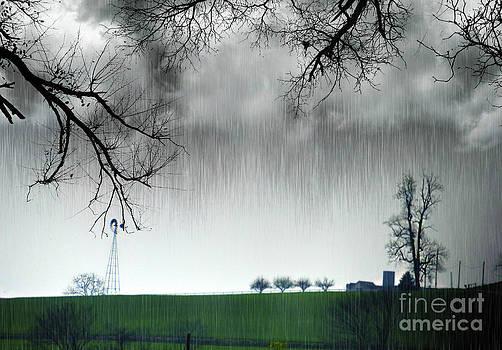 Rainy Day Farm Ver-2 by Larry Mulvehill