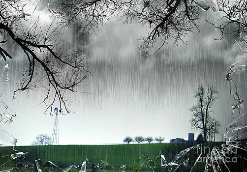 Rainy Day Farm Ver-3 by Larry Mulvehill