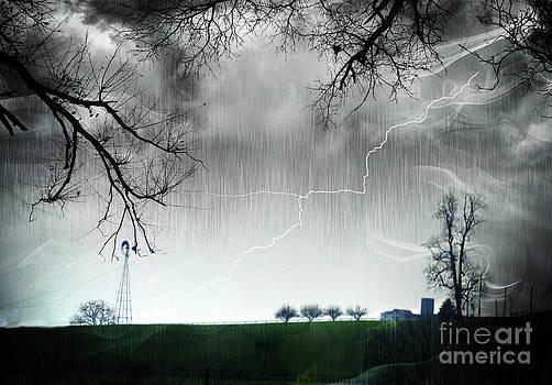 Rainy Day Farm Ver-4 by Larry Mulvehill