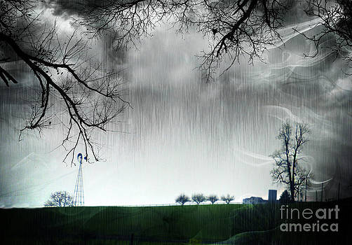 Rainy Day Farm Ver-5 by Larry Mulvehill