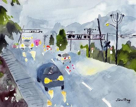 Rainy Night in my Hometown by Janel Bragg