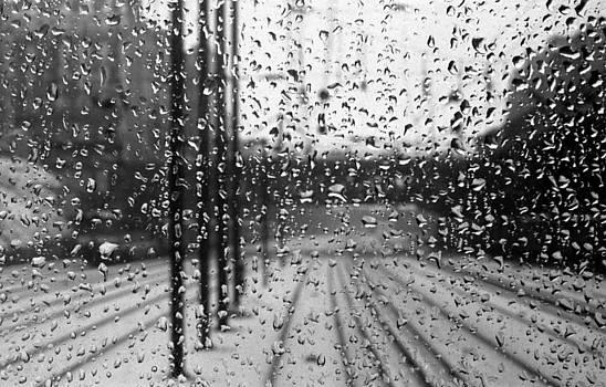 Rainy trip by Francis Erevan