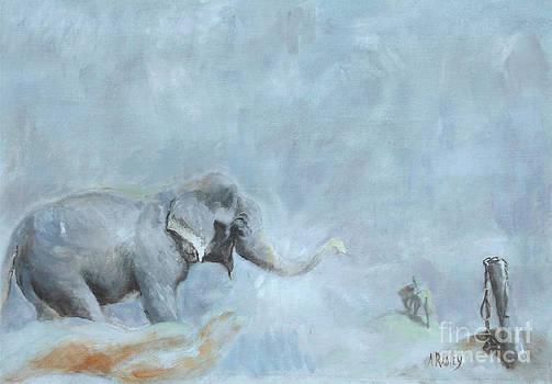 Raju's Celebration by Ann Radley