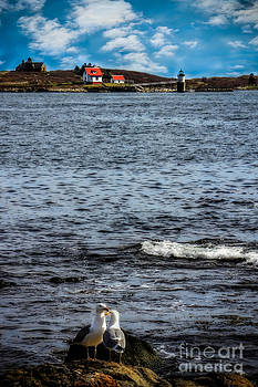 Ram Island Lighthouse Boothbay by Brenda Giasson