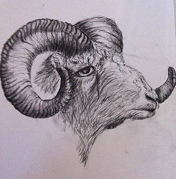 Ram On by Jessica Sanders