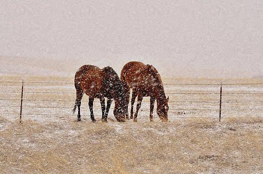 Kae Cheatham - Ranch Horses in Snow