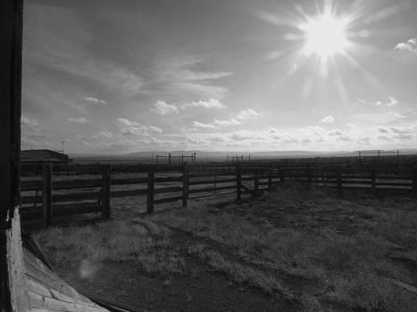 Rancho Colorado by Anna Villarreal Garbis
