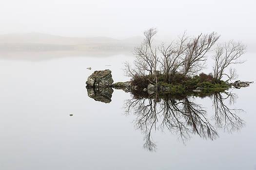 Rannoch Moor Mist by Grant Glendinning