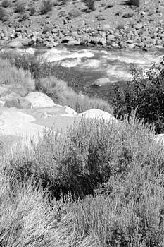 Harold E McCray - Rapids in White Mountains
