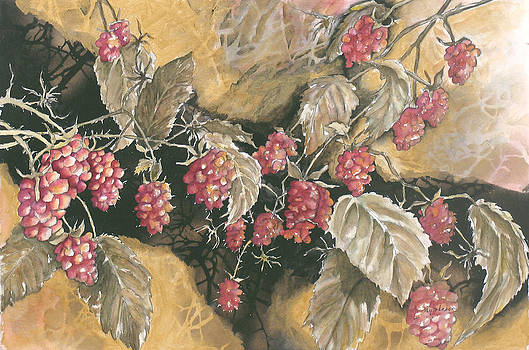 Raspberries by Kay Johnson
