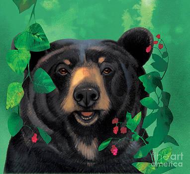 Raspberry Bear by Tracy Herrmann