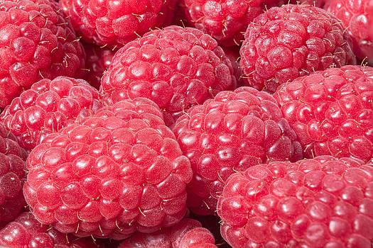 Raspberry by Volodymyr Kyrylyuk
