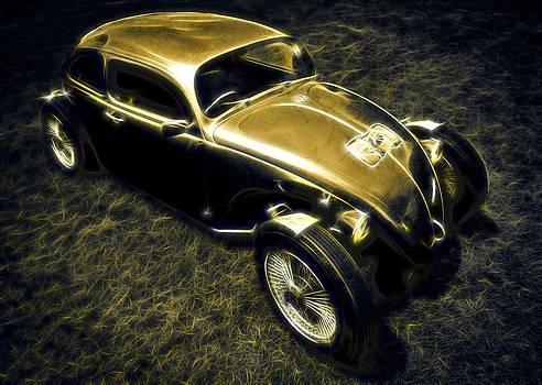 motography aka Phil Clark - Rat Beetle