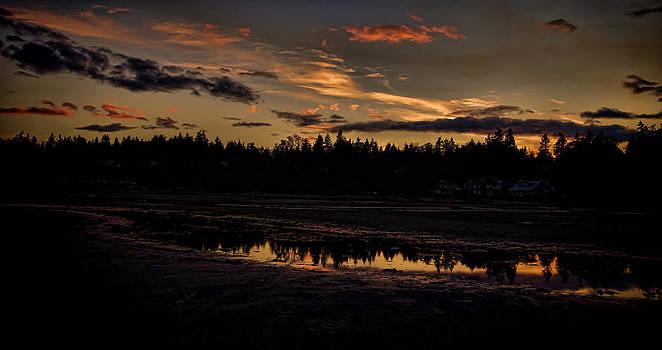 Marilyn Wilson - Rathtrevor Beach Evening Sunset