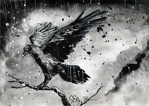 Raven in the rain by Silja Erg