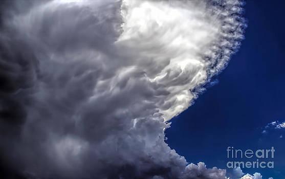 Jon Burch Photography - Raw Power