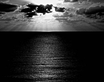 Rays In Black And White by Heidi Horowitz