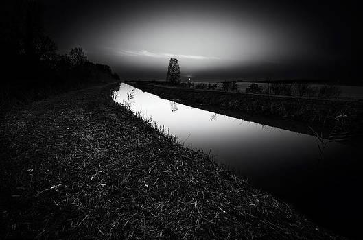 Rays by Tommaso Di Donato
