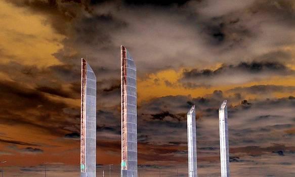 Bishopston Fine Art - Reach for the Sky
