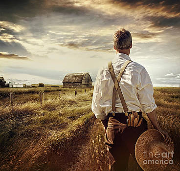 Sandra Cunningham - Rear view of a man looking out over rural farm fileds