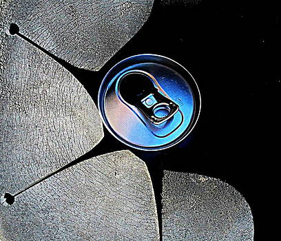 Recycled Can In A Recycle Bin by John King