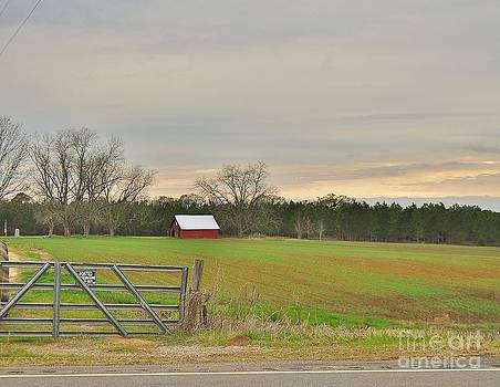Red Barn in the Field by Heather Beck