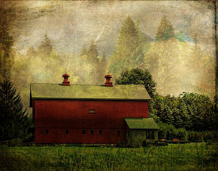 Pamela Phelps - Red Barn Obscura
